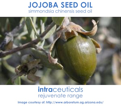Масло от семената на Жожоба салон нирвана